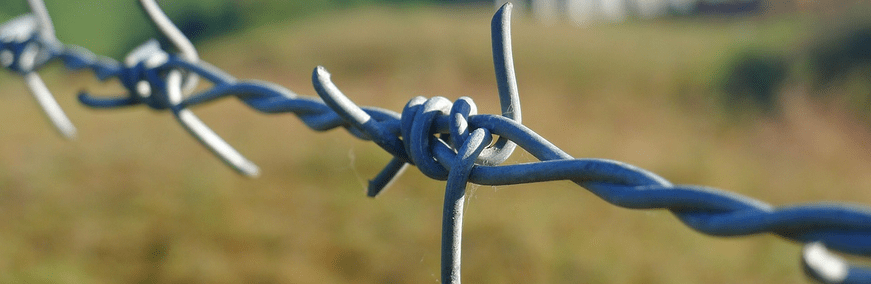 barbed wire. working capital loan