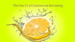 commercial borrowing 5 c's