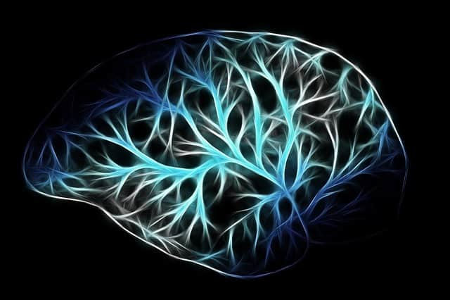 lending and the neuroscience